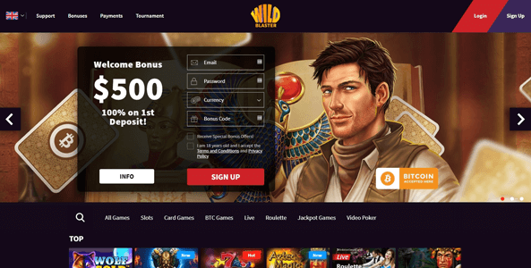 wild blaster casino website screen
