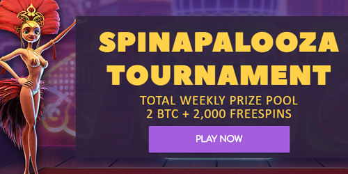 cryptowild casino spinapalooza tournament