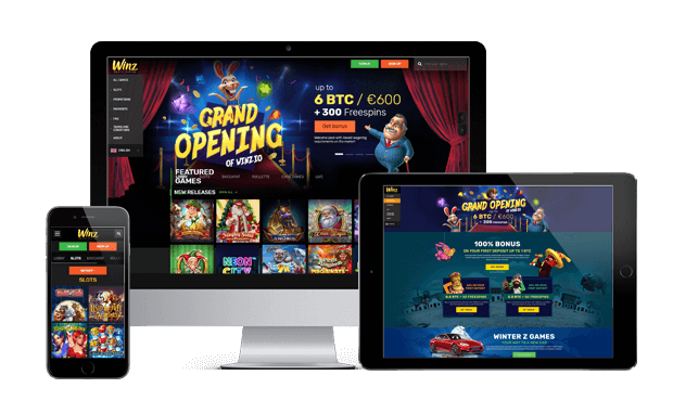 winz casino website review