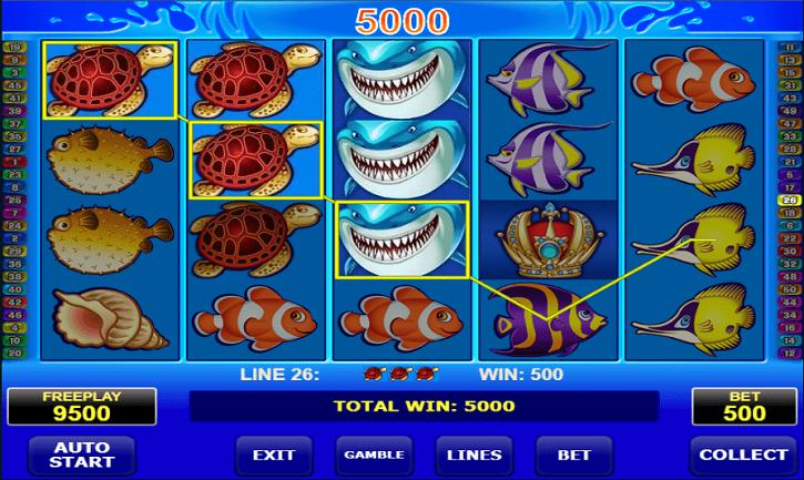 wild shark slot review