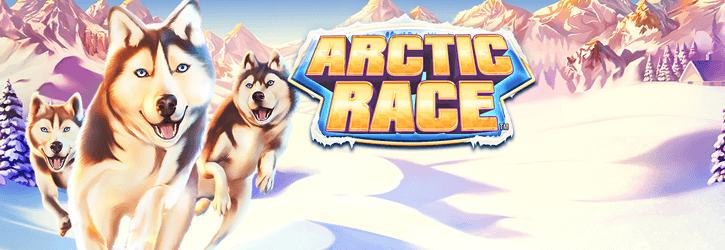 arctic race slot novomatic