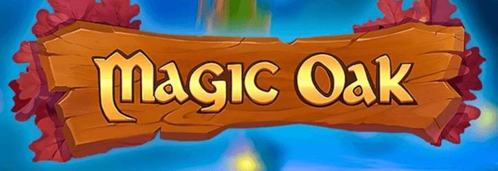 magic oak slot habanero
