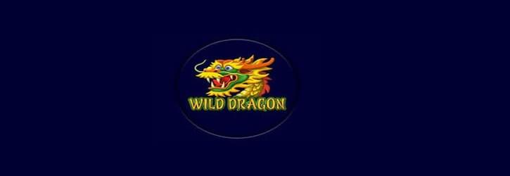 wild dragon slot amatic