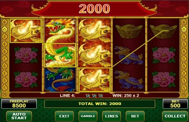 wild dragon slot screen