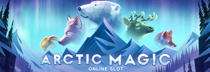 arctic magic slot microgaming