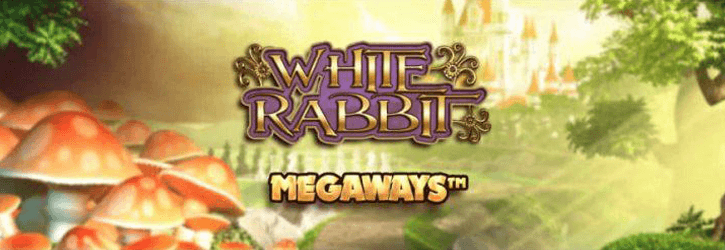 white rabbit slot microgaming