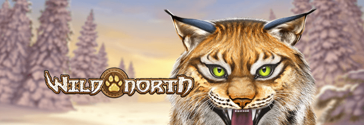 wild north slot playngo