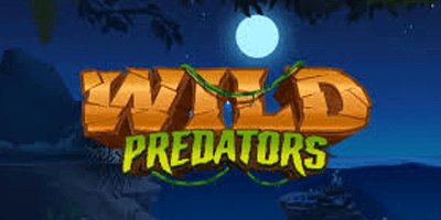 wild predators slot